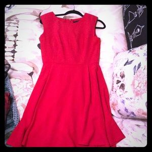 Limited Fit and Flare Dress